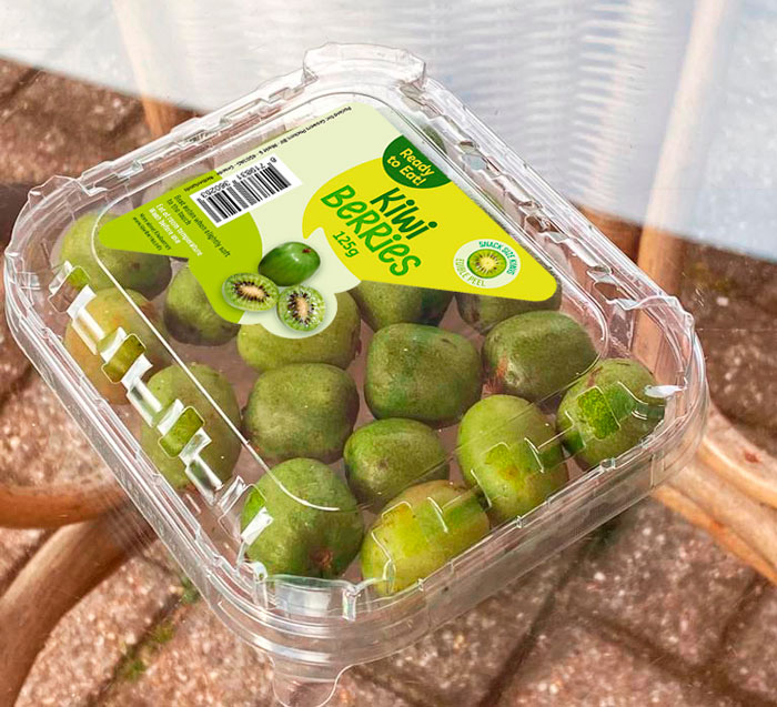 Kiwi-berries-ready-to-eat-punnet