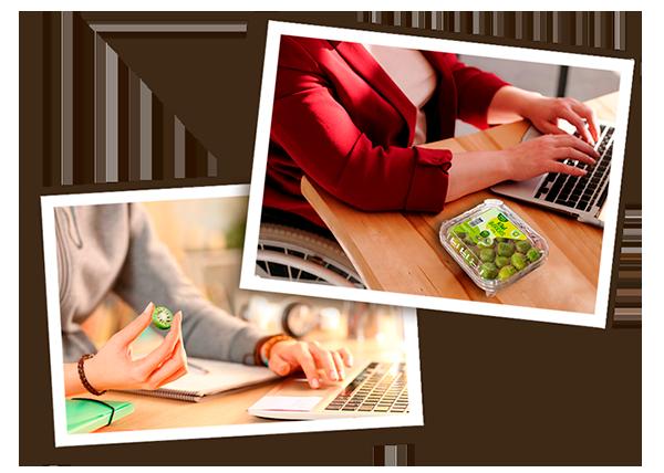 kiwi-berries-working-desk-laptop